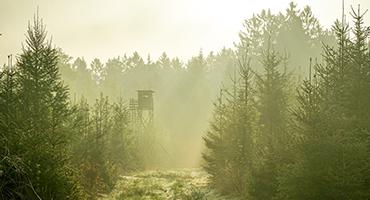 Jagttårn